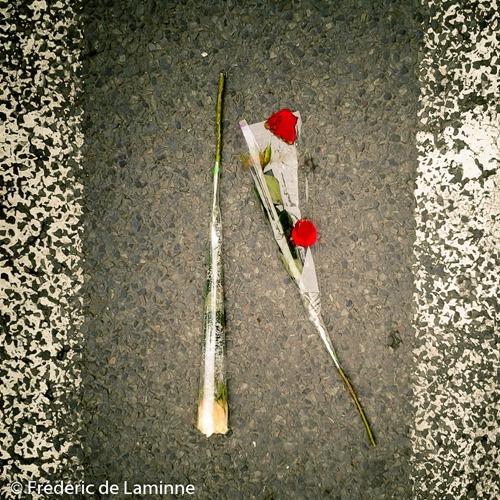 Des roses au milieu de la route, sur un passage piéton. Une histoire d'amour qui finit mal ?