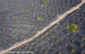 Vue sur les vignobles de La Geria près de Yaiza (Lanzarote).