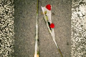 Roses au milieu de la rue